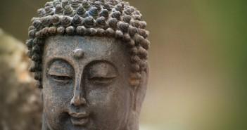 A Calmer Mind is Your Choice