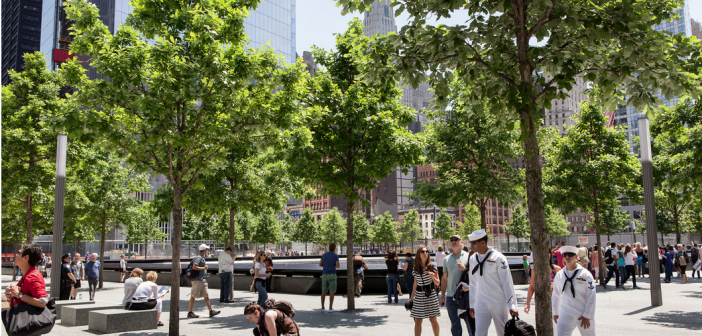 Swamp white oaks in the 9/11 Memorial. The photo was taken on May 17, 2012 by Bartlett Tree Experts.