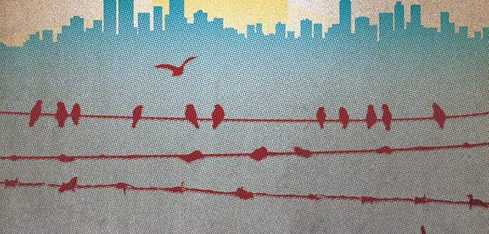 Let's Make New York City A True Sanctuary City